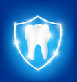 clean and strong white tooth in protection vector image vector image