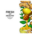 honey ginger lemon and mint border vector image vector image