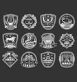 israel david star lion menorah judaism badges vector image