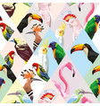patchwork tropical birds multicolor background vector image vector image