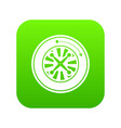 roulette icon green vector image vector image