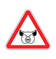 warning pig swine on red triangle road sign vector image vector image