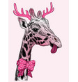 holiday face of giraffe with horns vector image vector image