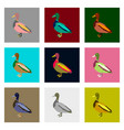 set of in flat style wild duck vector image vector image