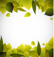 spring leafs abstract background vector image vector image