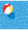 summer background with ball floating on water vector image
