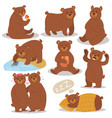 cartoon bear character different pose set vector image