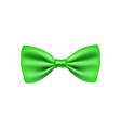 green bow tie from satin material vector image vector image