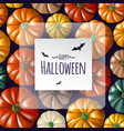 halloween realistic background vector image