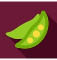 Pea flat icon with long shadow vector image