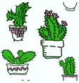 seamless pattern of drawn cactus vector image vector image