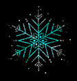 snowflake-color-four vector image vector image