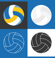 white volleyball vector image vector image