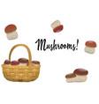 Wicker basket full of orange cap boletus