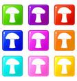 mushroom icons 9 set vector image