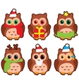 owls in winter hats colored vector image vector image