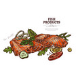 salmon dish hand drawn web banner template vector image