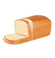 slices bread realistic fresh bakery products vector image