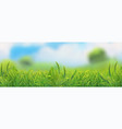 spring landscape green grass vector image vector image