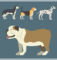 funny cartoon dog character bread in flat style vector image