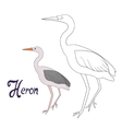 Educational game coloring book heron bird vector image vector image
