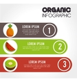 organic infographic presentation icon vector image