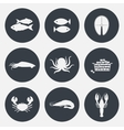 Set of seafood icons vector image