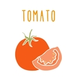 Tomato isolated on white vector image vector image