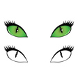 Cartoon cat eyes vector image vector image