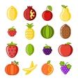 Fruit icons set flat design line art isolated vector image