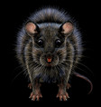 mouse realistic artistic graphic color portrai vector image vector image