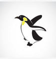 penguin design on white background polar animals vector image vector image