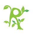 r letter ecology nature element icon vector image