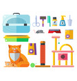 colorful cat accessory cute animal icons vector image vector image