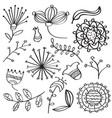 doodle outline flowers and leafs collection for vector image