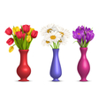 Flowers in vases isolated on white vector image