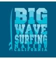 surfing Malibu California surfing T-shirt vector image
