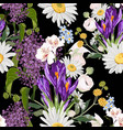 bouquet many king spring flowers vector image vector image