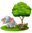cartoon elephant under a tree on a white backgroun vector image