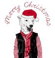 Christmas cute bear vector image vector image