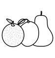 fresh orange citrus and mango with pear vector image vector image