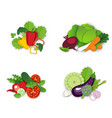 fresh organic vegetables composition set vector image vector image
