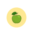 Icon Colorful Apple vector image
