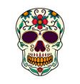 mexican sugar skull design element for logo vector image vector image