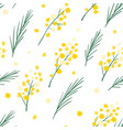 seamless pattern with mimosa flowers and leaves vector image vector image