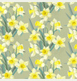 seamless vintage pattern lush yellow daffodils vector image vector image