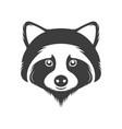 vintage logotype a raccoon vector image