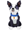 Howling Boston Terrier vector image