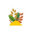 autumn leaf logo vector image