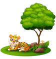 cartoon tiger lay down under a tree on a white bac vector image vector image